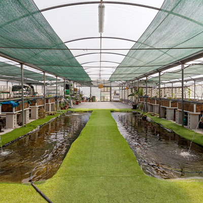 The-circle-aquaponic-system-real