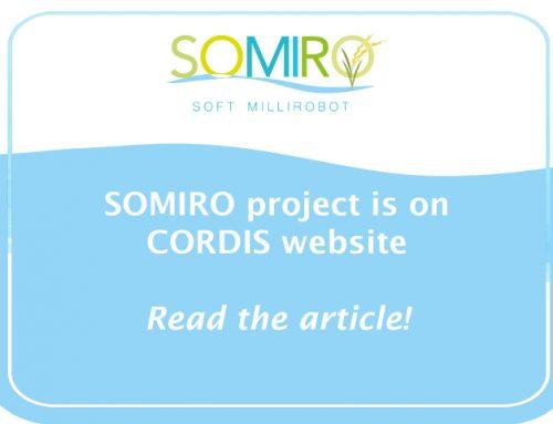 SOMIRO project is on Cordis website!